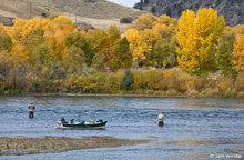 New Fly Fishing Gallery Goes Live