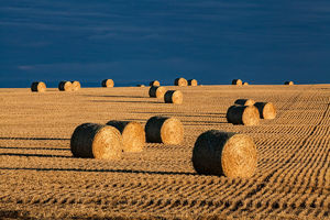 Agriculture / Country Scenics