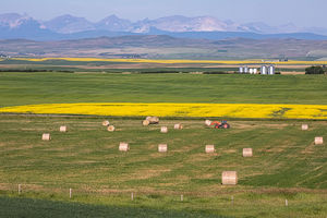 Agriculture / Country Scenics 2