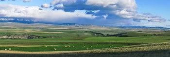 Livingstone Ridge 09_pan_5096_01