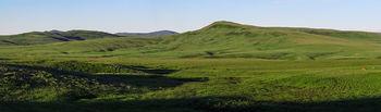 Porcupine Hills 10_pan_7281
