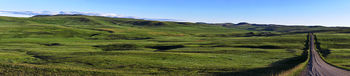 native prairie, Porcupine Hills