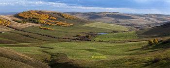 Porcupine Hills 14_pan_8464_66