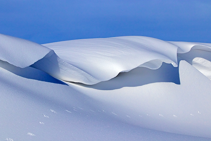 snow drifts take on the appearance of artistic snow scupltures