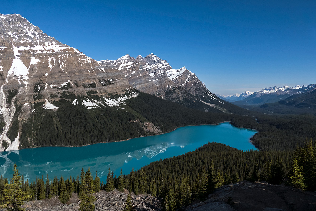 Peyto Lake in spring, above the overlook